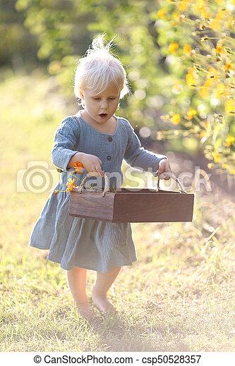 Little Toddler Child Walking Through the Garden Picking Flowers on Summer Day - csp50528357