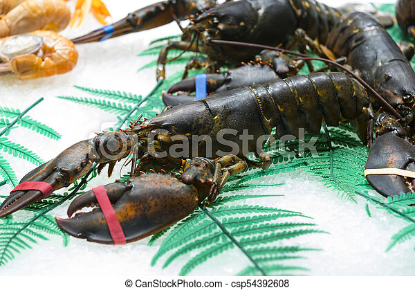 Live lobster on the ice shelf of the store on ice. - csp54392608