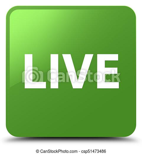 Live soft green square button - csp51473486