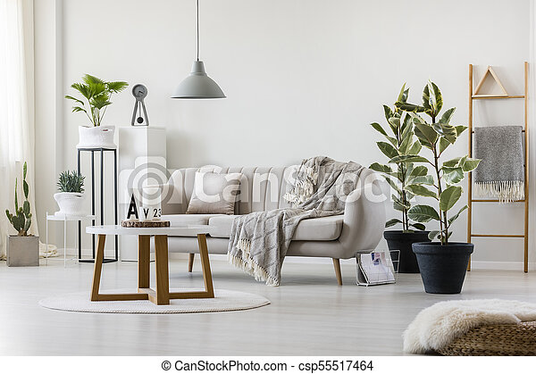 Living room with elegant couch