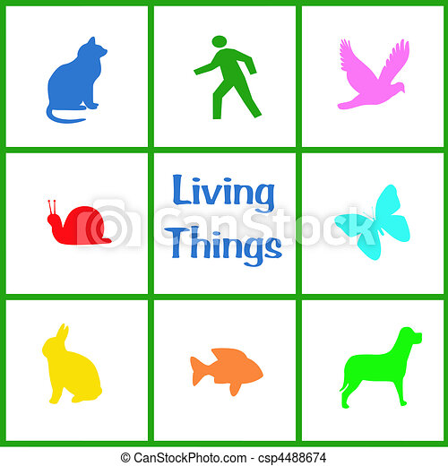 Living Things Illustration Colorful Assorted Living Things Poster