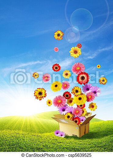 livraison, printemps, 2 - csp5639525