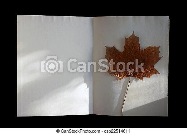 livre, automne, maple-leaf - csp22514611