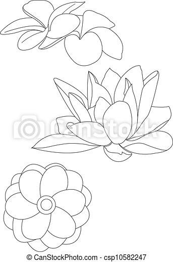 Livre Coloration Fleur