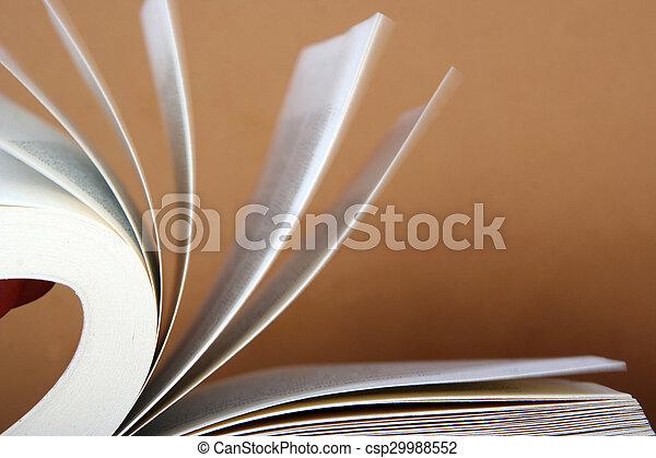 livro - csp29988552