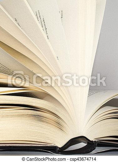 livro - csp43674714