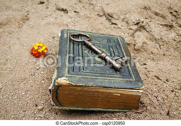 livro, tecla - csp0120950