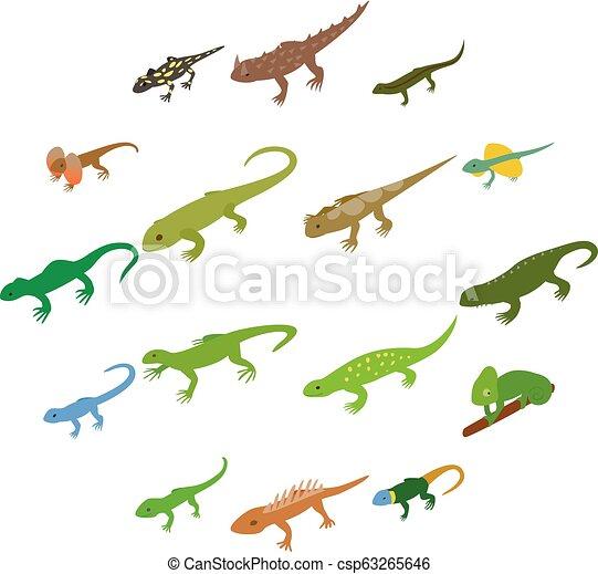 Lizard icons set, isometric 3d style - csp63265646