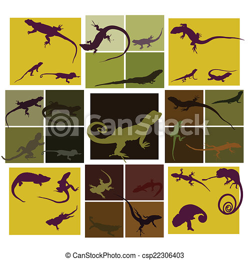 Lizard set on colorful background - csp22306403