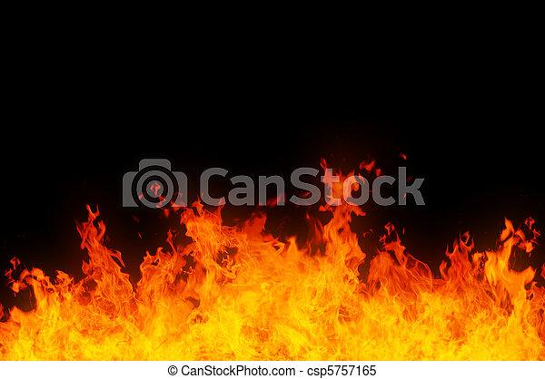 llamas - csp5757165