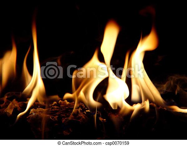 llamas, bailando - csp0070159