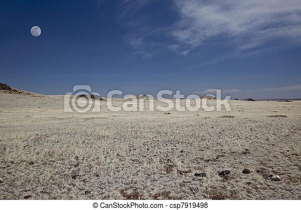 llanuras, nuevo méxico septentrional - csp7919498
