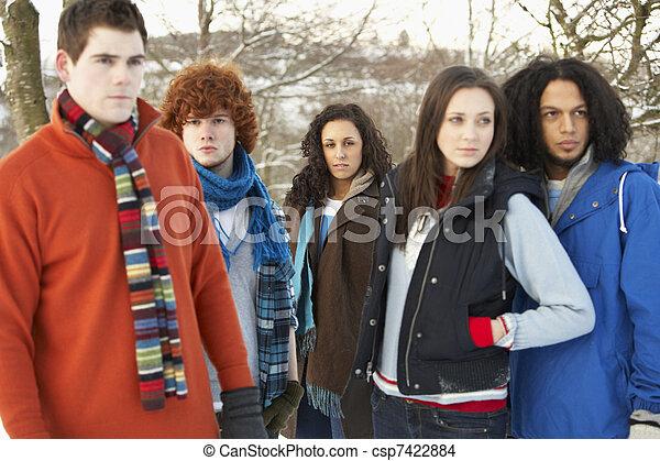 Un grupo de amigos adolescentes divirtiéndose en un paisaje nevado usando ropa de esquí - csp7422884