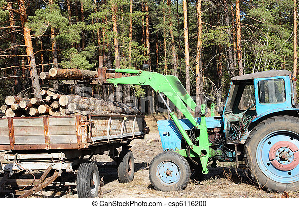 Loading logs of trees in the forest - csp6116200