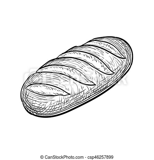 loaf of bread hand drawn vector illustration isolated on loaf of bread clip art image loaf of bread clip art coloring