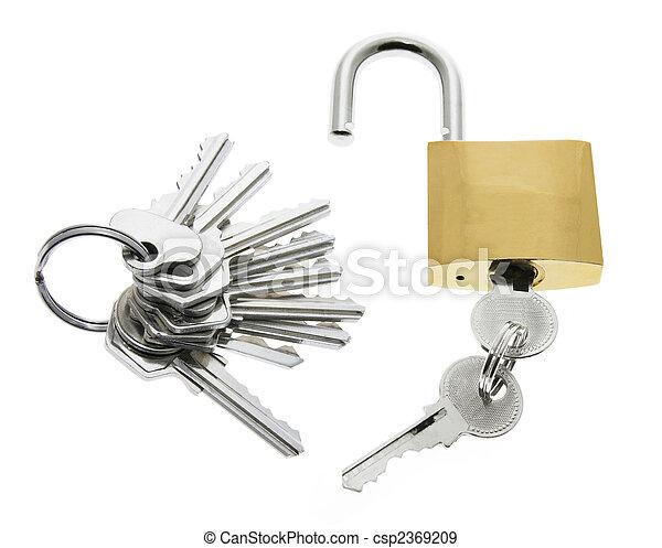 Lock and Keys - csp2369209