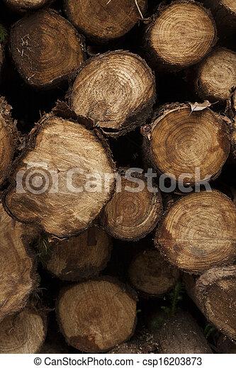 Log background - csp16203873