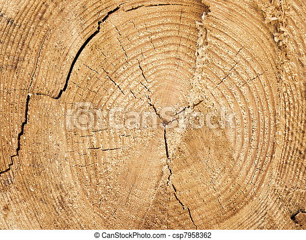 log background - csp7958362