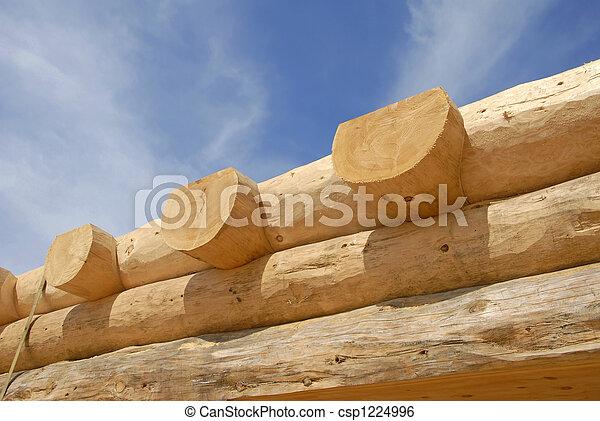 Log Home Construction - csp1224996