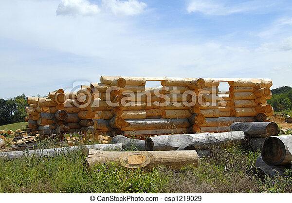 Log Home Construction - csp1219029