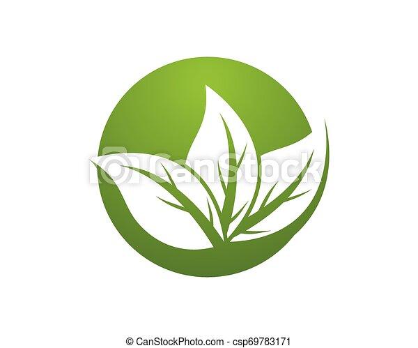 logotipo, pianta, vettore, ecologia, natura - csp69783171