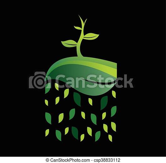 Semilla natural en el logo de la hoja - csp38833112