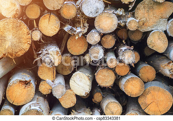Logs cuts prepared for fireplace. Wall of stacked wood logs as background - csp83343381