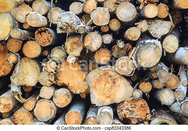 Logs cuts prepared for fireplace. Wall of stacked wood logs as background - csp83343386
