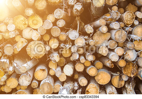 Logs cuts prepared for fireplace. Wall of stacked wood logs as background - csp83343394