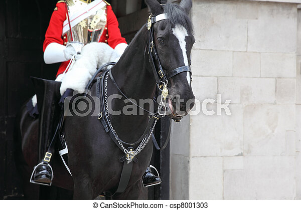 LONDON - JUNE 7: Black horse under the guardsman in red coat and black jackboot June 7, 2010 in London. - csp8001303