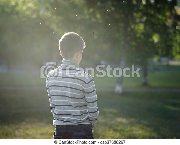 lonely boy teenager standing lit by the sun in Park and flying gnats - csp37688267