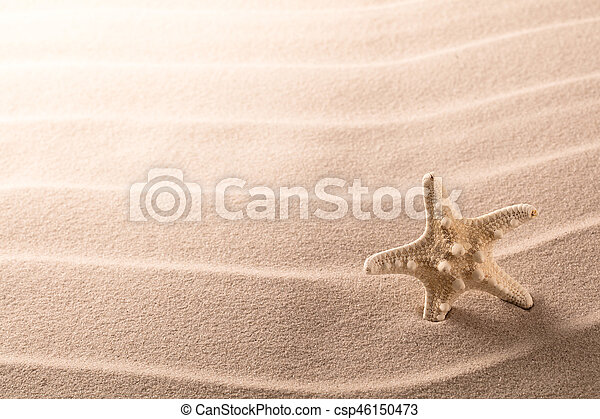 lonely sea star fish or starfish standing on the rippled beach sand - csp46150473