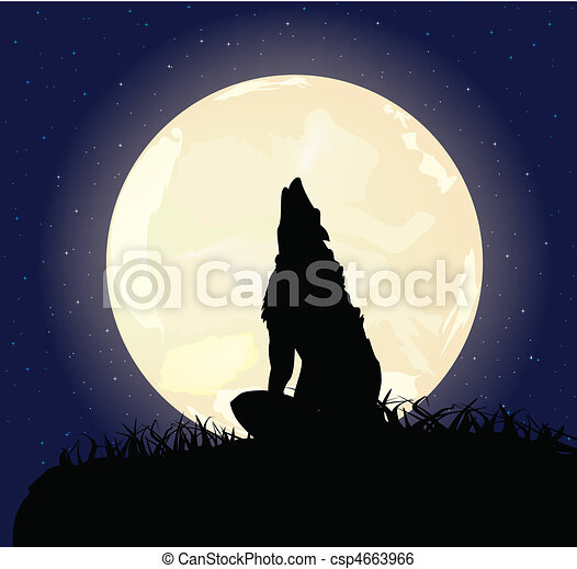 lonely wolf - csp4663966