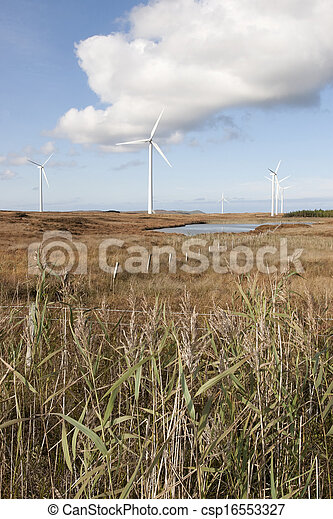 long grass and bogland with wind turbines - csp16553327