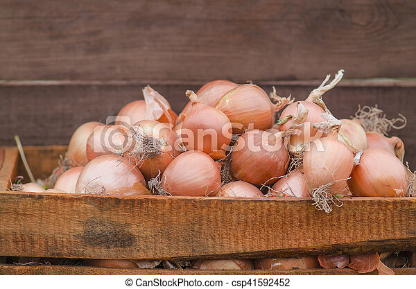 Lot of onions in crate. - csp41592452