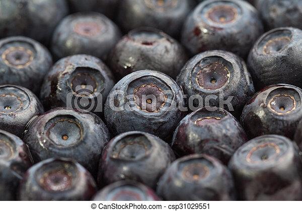 Lot of unfrozen blueberries. Macro view. Close-up. - csp31029551