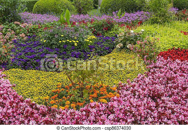 lots of colorful flowers - csp86374030