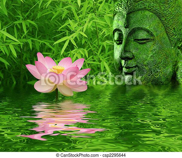 lotus bloem - csp2295644