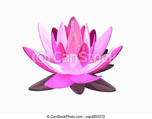 lotus flower - csp3853372