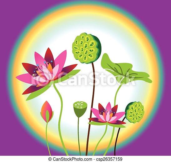 Lotus Flower - csp26357159