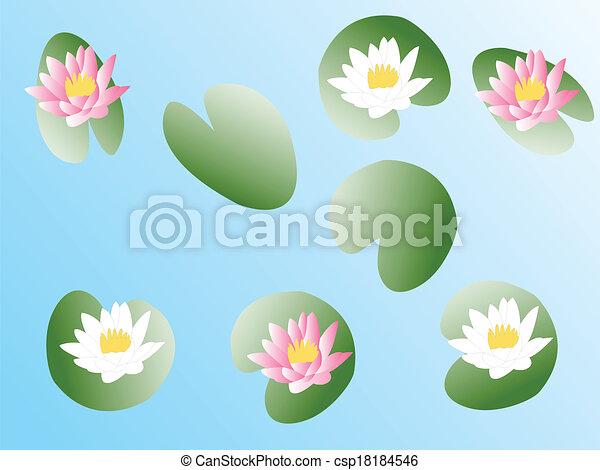 lotus flower - csp18184546