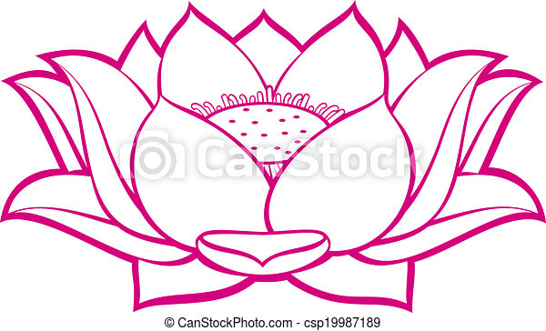 lotus flower - csp19987189