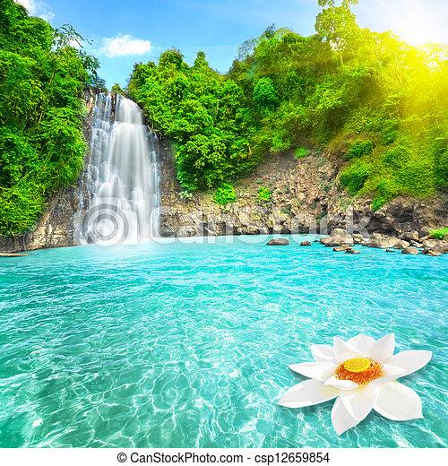 Lotus flower in waterfall pool - csp12659854