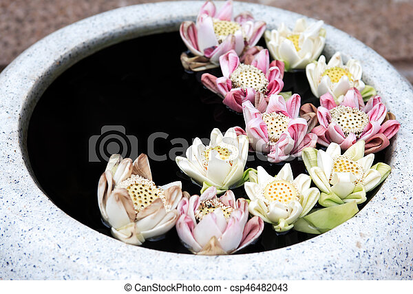 Lotus Flowers In Vase Buddhism Symbol Few Beauty Lily Flowers In