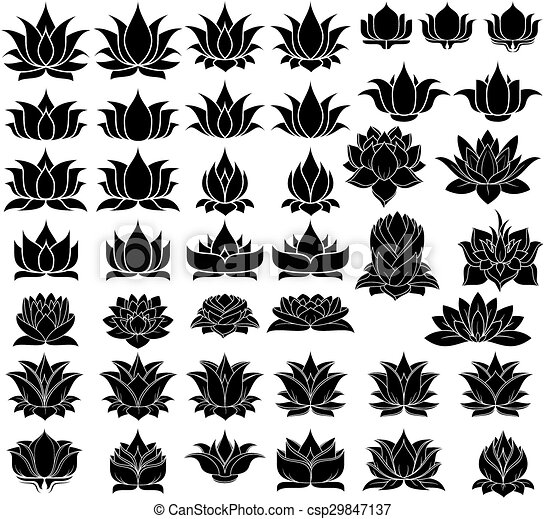 Illustration Of Great Lotus Flowers Silhouette