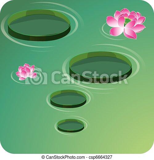 Lotus flowers(waterlily) - csp6664327