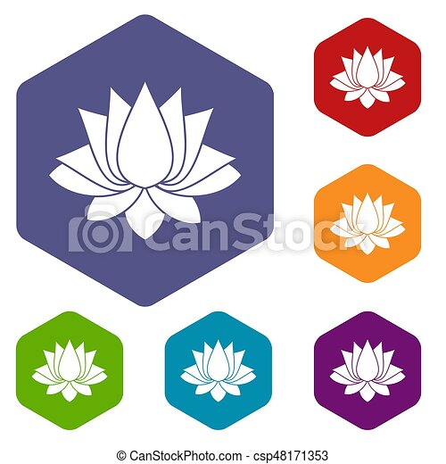 Lotus icons set hexagon - csp48171353