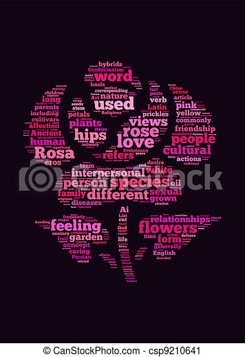 love and rose flower text graphic and arrangement concept