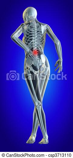Lower spine - csp3713110