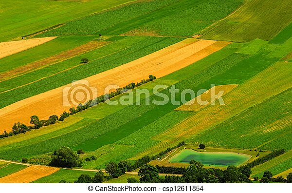 luchtopnames, velden, groene, aanzicht, oogsten, voor - csp12611854